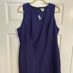 J. Crew navy polka dot dress size 12 NWT